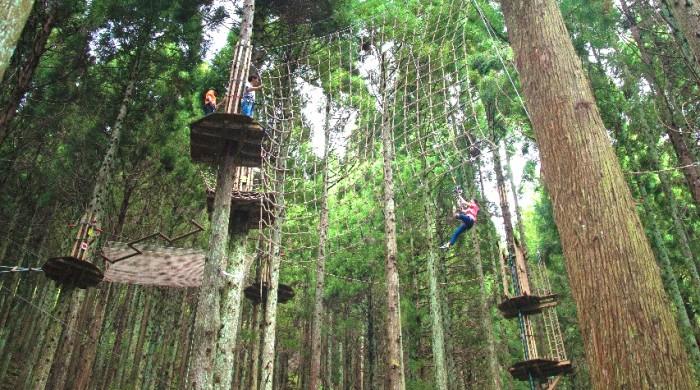 森のアスレチック、フォレストアドベンチャー